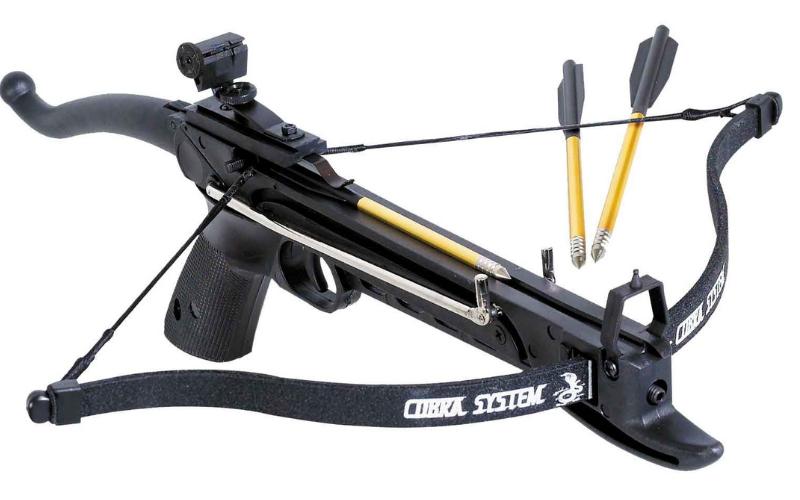 can felon own crossbow
