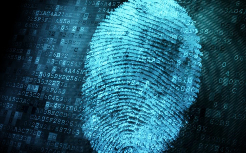 what show up on fingerprint background checks