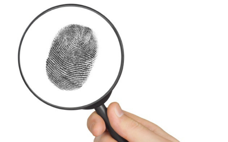 what show up on the fingerprint background check