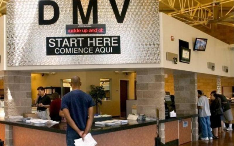 dmv run the background check tips