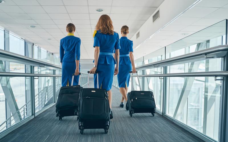 can a felon become a flight attendant