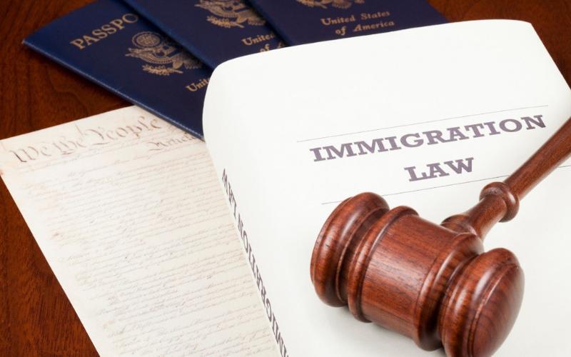 will felony revoke citizenship tips