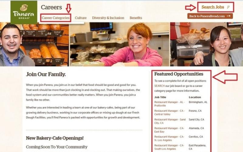 panera bread application online jobs career info guide