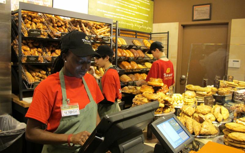 panera bread application online jobs career info tips