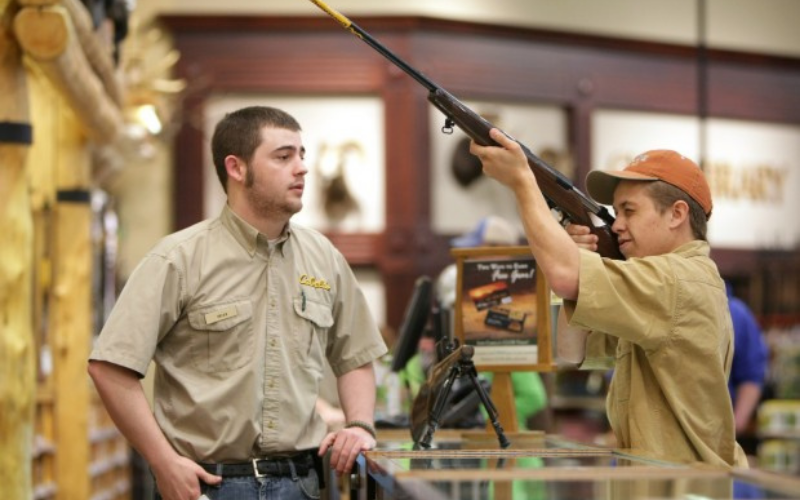 the cabelas application guide
