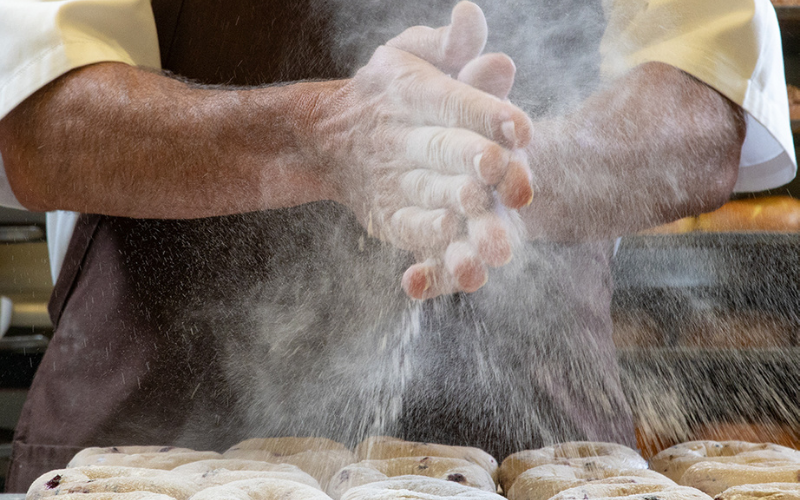 the einstein bros bagels application guide