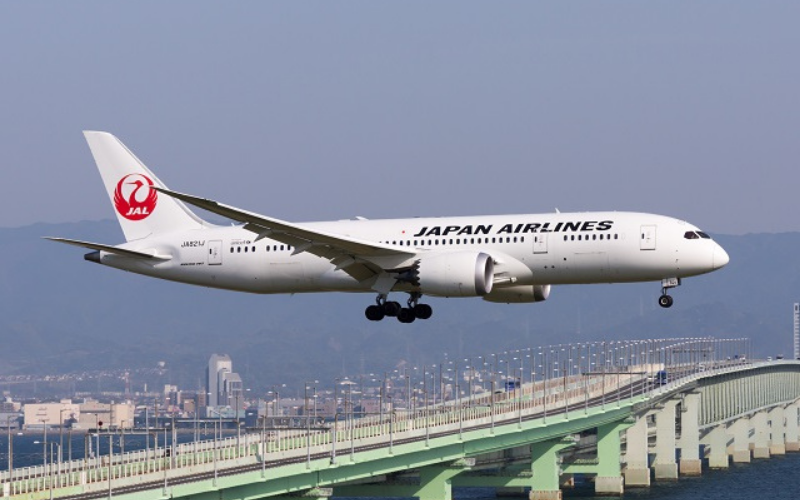the japan airlines application