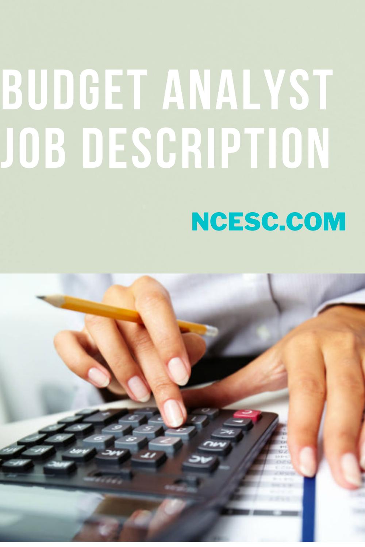 the budget analyst job description