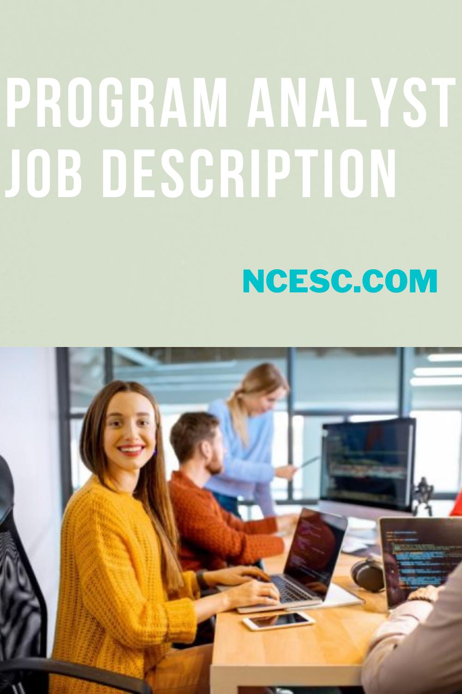 program analyst job description