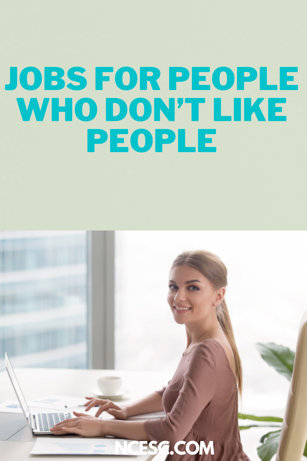 jobs for people who dont like people